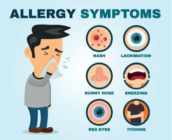 Allergy #1